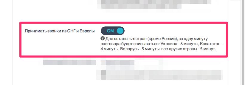 """Переключатель включения опции """"Принимать звонки из СНГ и других стран"""""""