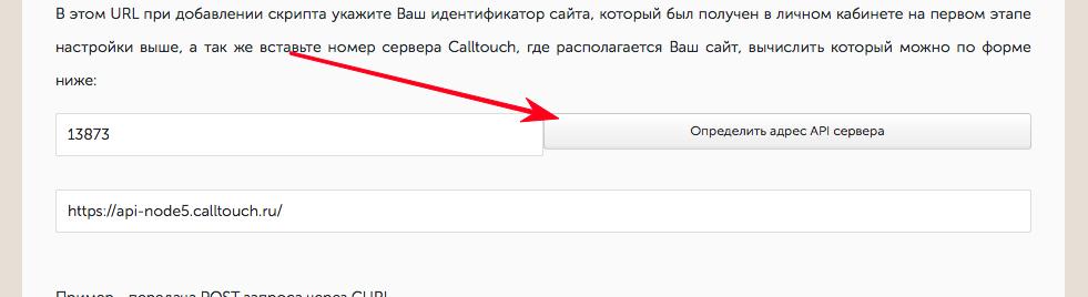 Форма определения номера сервера API CallTouch