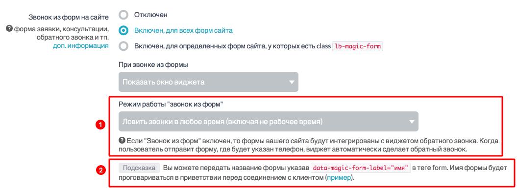 Дополнительные настройки интеграции обратного звонка с формами на сайте